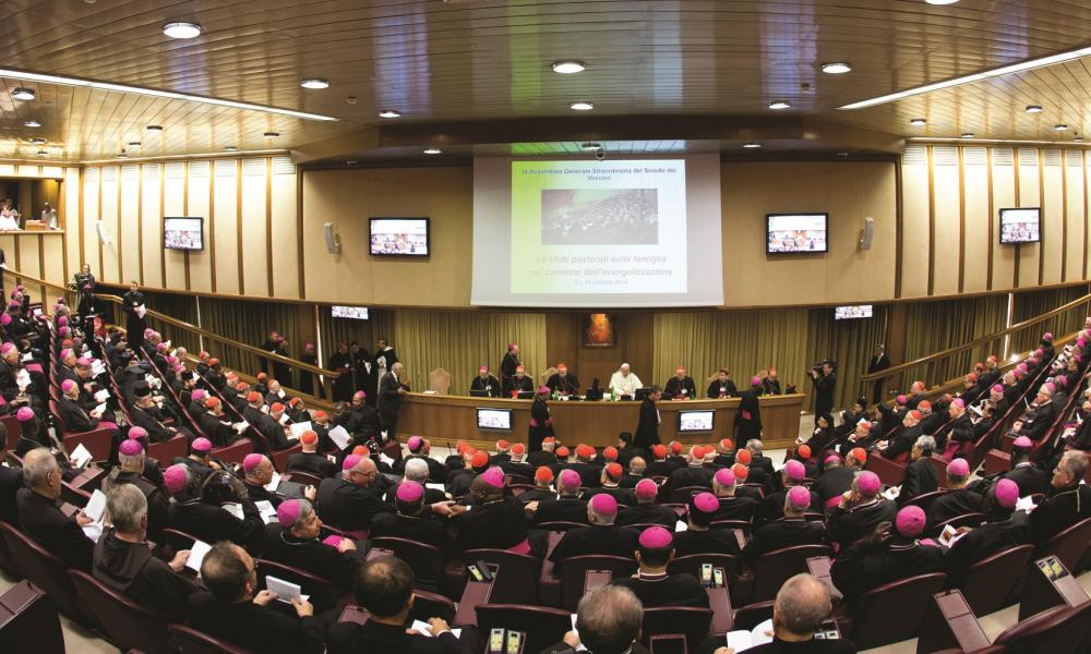 Follow up on the Synod Extraordinary Synod on the Family 2014 Final Relatio