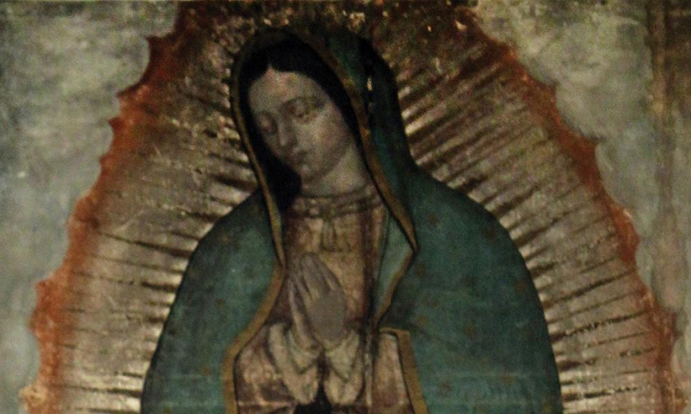 Special Report: Our Lady of Guadalupe